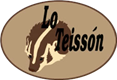 LoTeisson